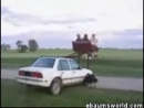 Hill Billy Ride Stupid Videos